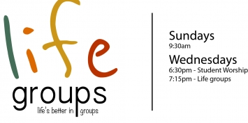 Life Groups 2015 Revision